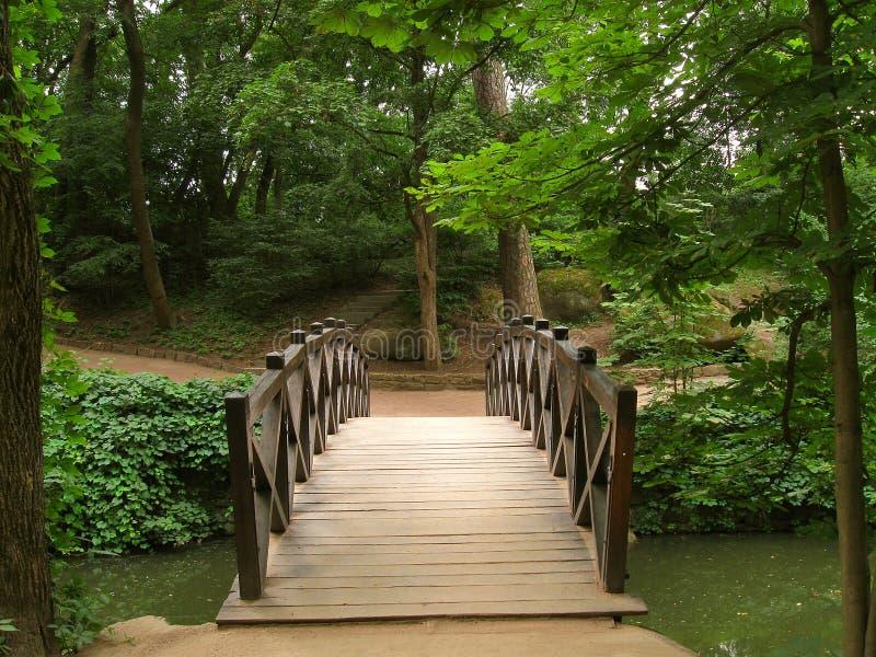 bridżowy drewniany obraz royalty free