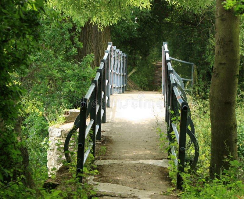 bridżowy las obraz stock