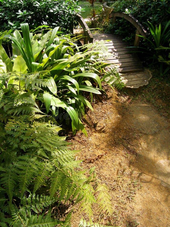 bridżowy ogrodowy drewno zdjęcia stock