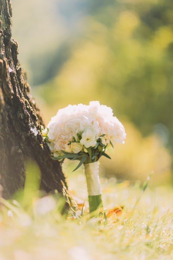 Bridal букет свадьбы роз в солнечном парке весны лестницы портрета платья принципиальной схемы невесты wedding стоковые фото