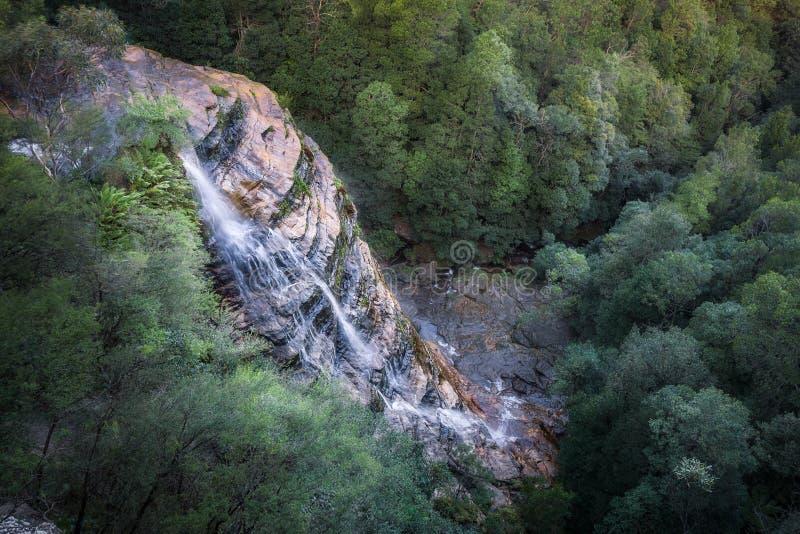 Bridal вуаль понижается на каскады Leura в голубых горах стоковое изображение rf