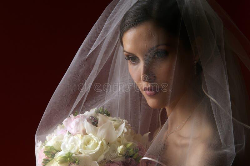 bridal выражения стоковые фото