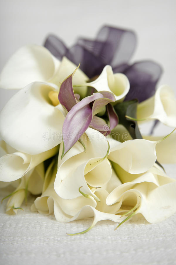 Bridal boquet. With arum lillies and purple ribbon royalty free stock photos