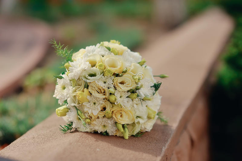 Download Bridal Bouquet stock photo. Image of flower, petal, rose - 27483458