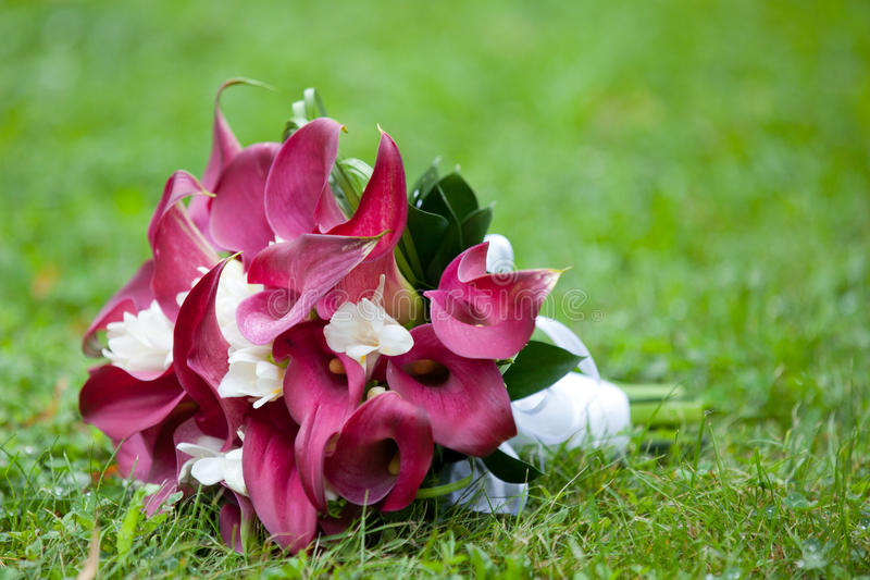 Download Bridal bouquet in a grass stock image. Image of wedding - 26425507