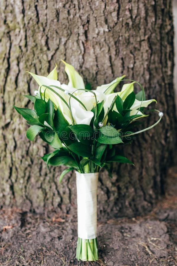 Wedding bouquet stands near the tree. copyspace, space for text stock images