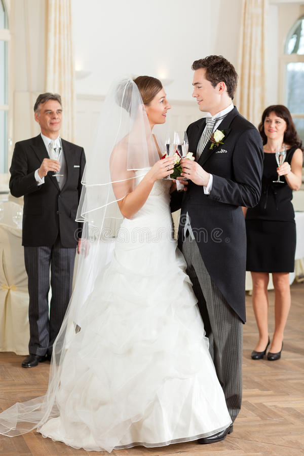 Download Bridal Couple Clinking Glasses Stock Photo - Image: 22130404