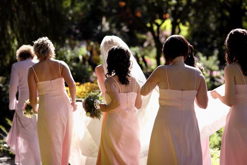 Bridal party royalty free stock photos