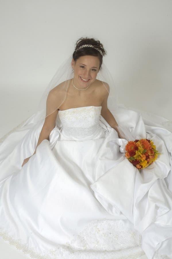 Free Bridal Portrait Stock Photography - 386072