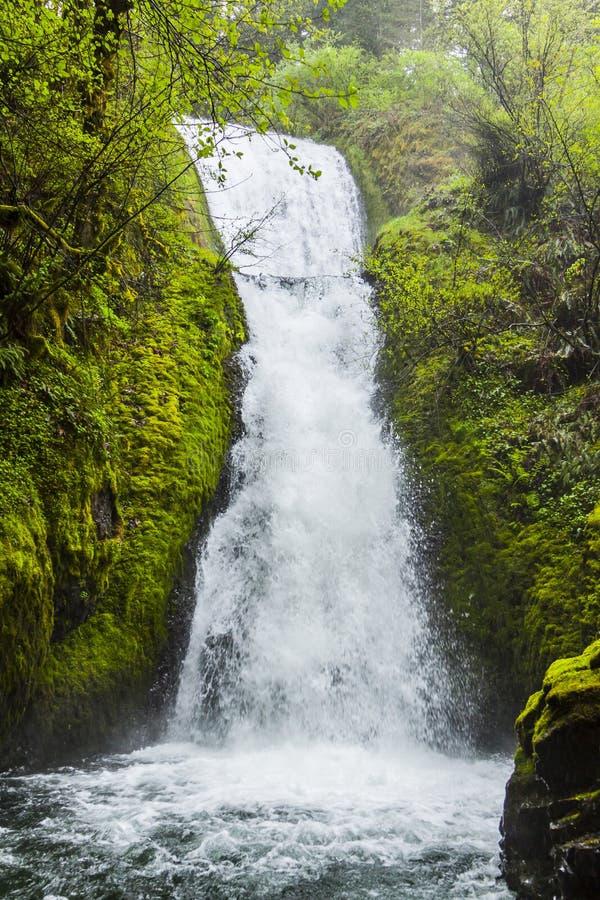 Bridal przesłona Spada w Multnomah Oregon obrazy royalty free