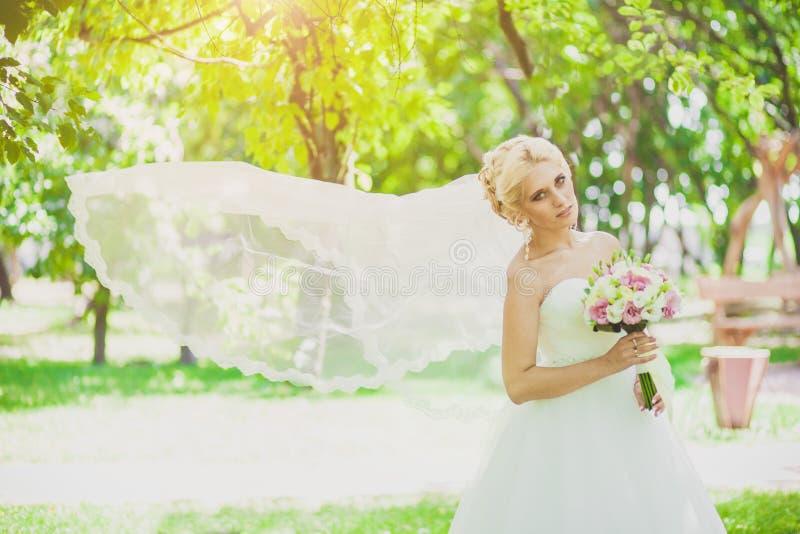 Bridal przesłona w wiatrze zdjęcie stock