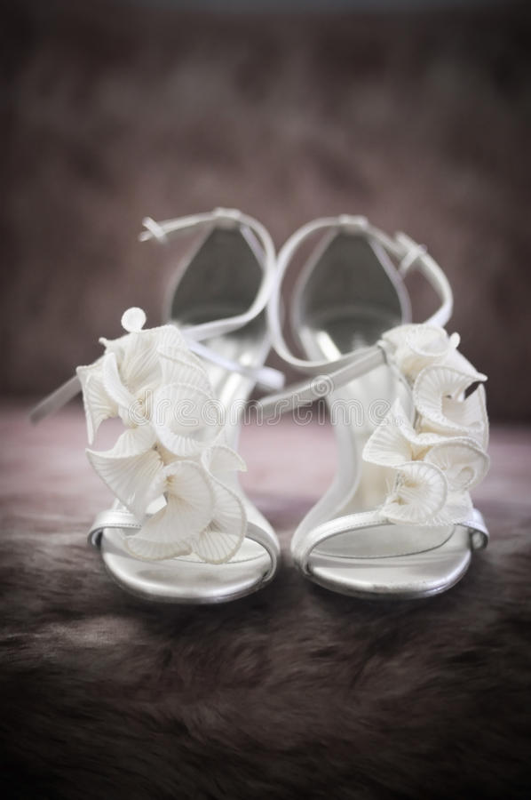 Download Bridal Shoes stock photo. Image of embroidery, bride - 14568872