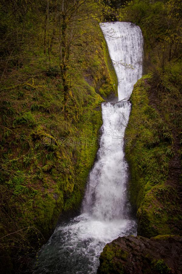 Bridal Vail Falls in the Columbia River Gorge, Oregon royalty free stock photos