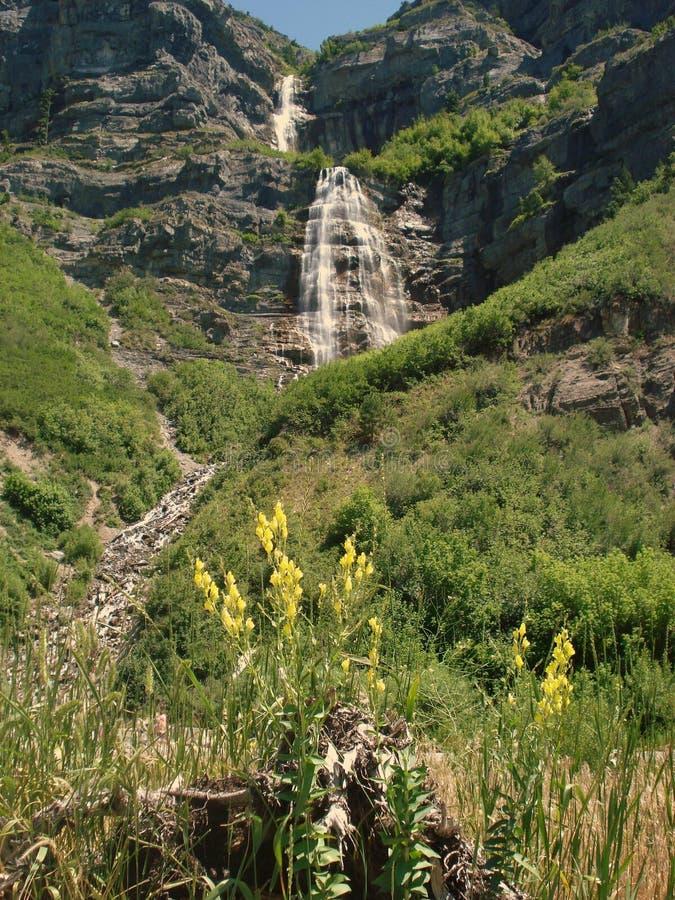 Bridal Veil Falls (Provo Cy) stock photos