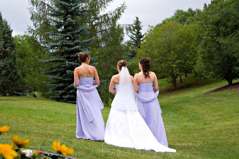 Bridal Walk. A bride and two bridesmaids enjoy a walk in a park stock photos
