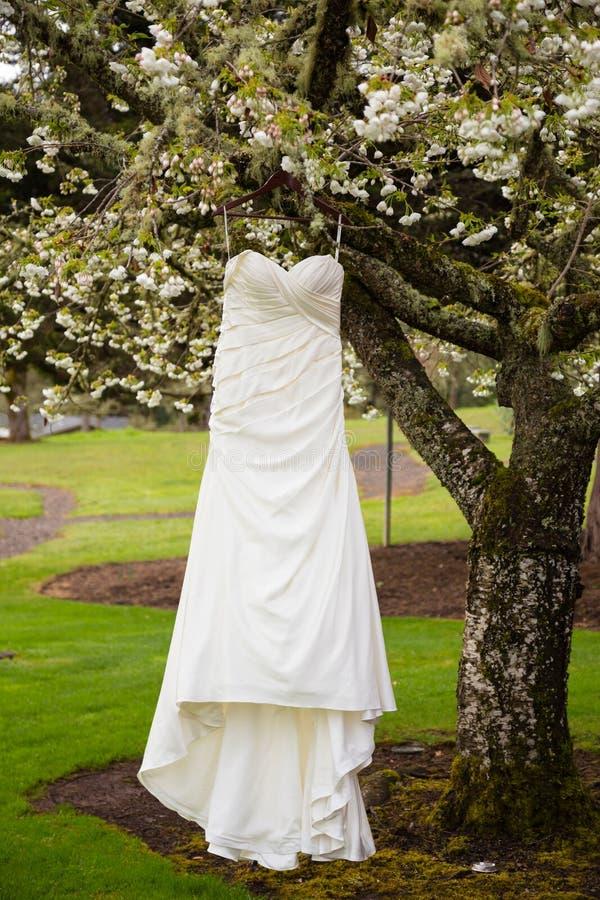 Download Bridal Wedding Dress Hanging In Tree Stock Photo