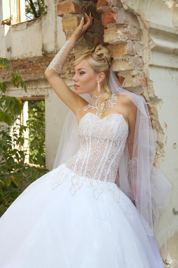 Download Bride Royalty Free Stock Photo - Image: 10938375