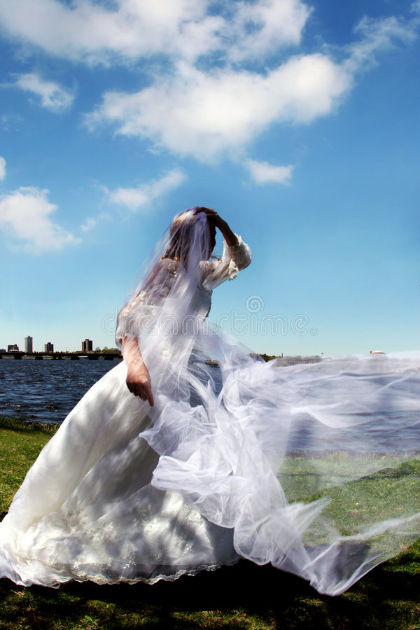 Download Bride stock image. Image of color, innocence, commitment - 116409