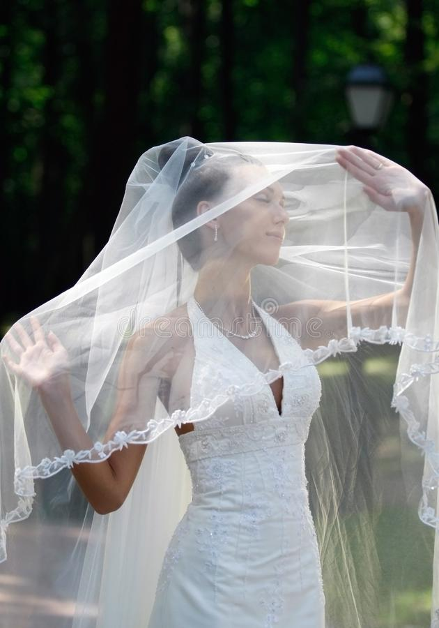Download The bride stock image. Image of veil, hairdress, wedding - 14869681
