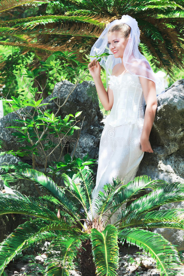 Download Bride Stock Photo - Image: 16542940