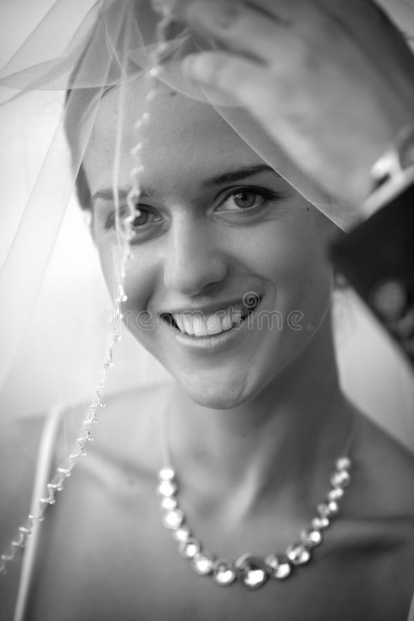 Download Bride Royalty Free Stock Photo - Image: 16796525