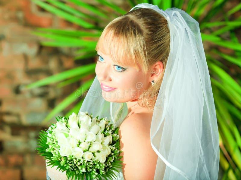 Download Bride stock photo. Image of gloves, portrait, woman, brick - 16843628