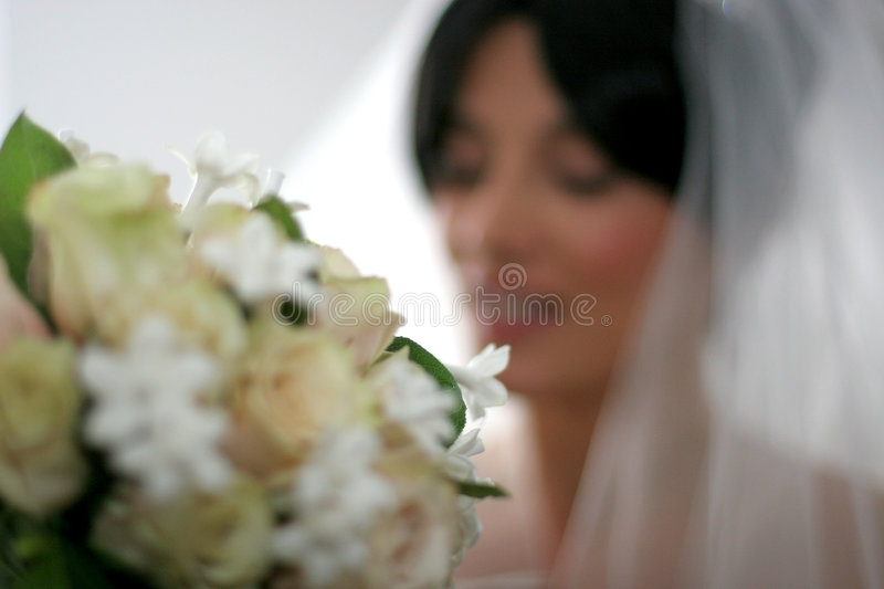 Download Bride stock photo. Image of betrothal, celebrate, fiancee - 238668