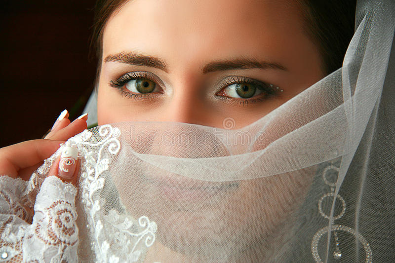 Download Bride stock photo. Image of smiling, beauty, female, cheerful - 24070346