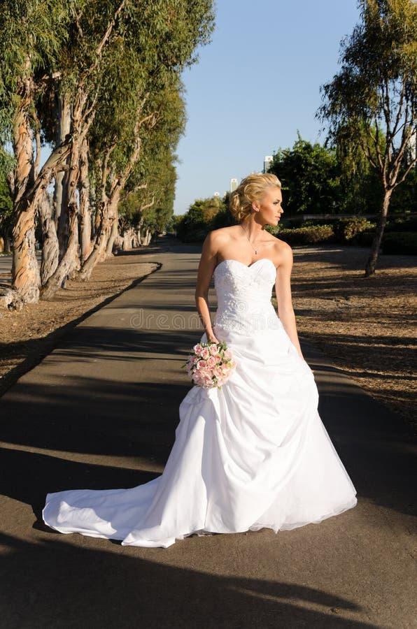 Download The Bride stock photo. Image of bride, wedding, park - 26849956