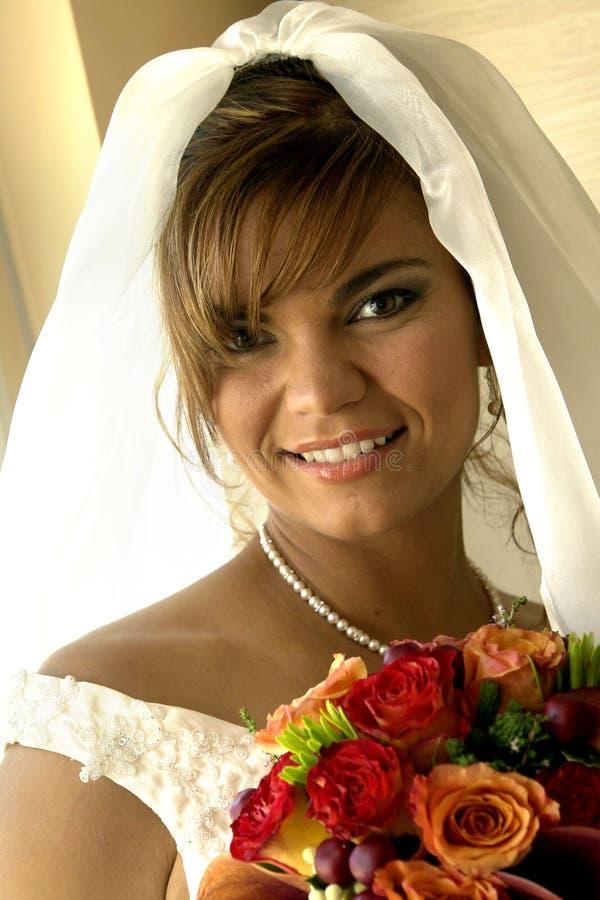 Download Bride stock photo. Image of dress, looking, ceremony, elegant - 3261972