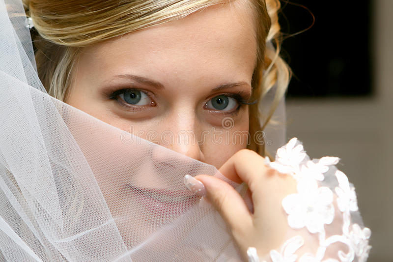 Download Bride Royalty Free Stock Image - Image: 9958256