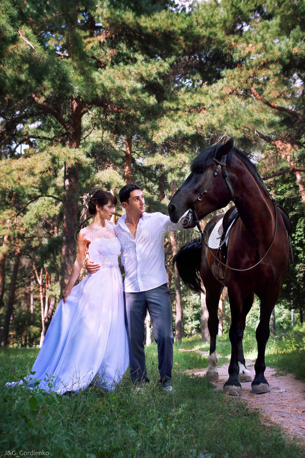 Free Bride And Groom Posing In The Garden With A Horse Stock Images - 21424764