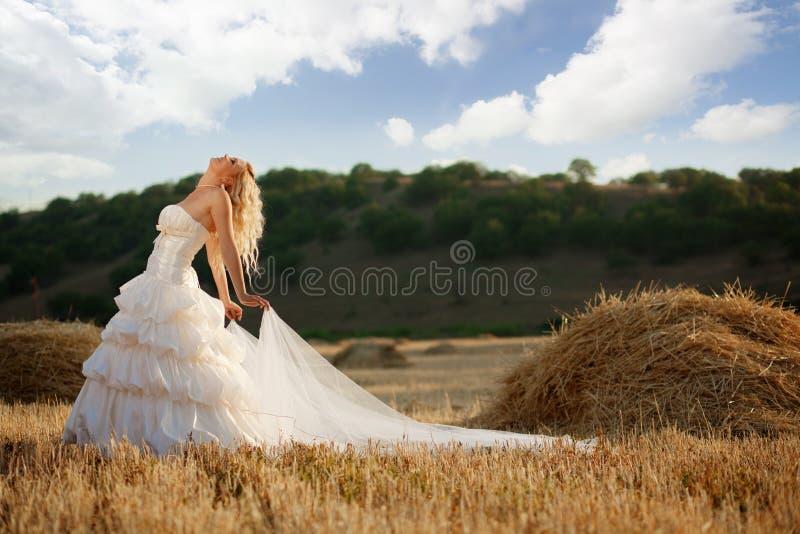 Bride in autumn field. Bride posing in beautiful autumn landscape stock photos