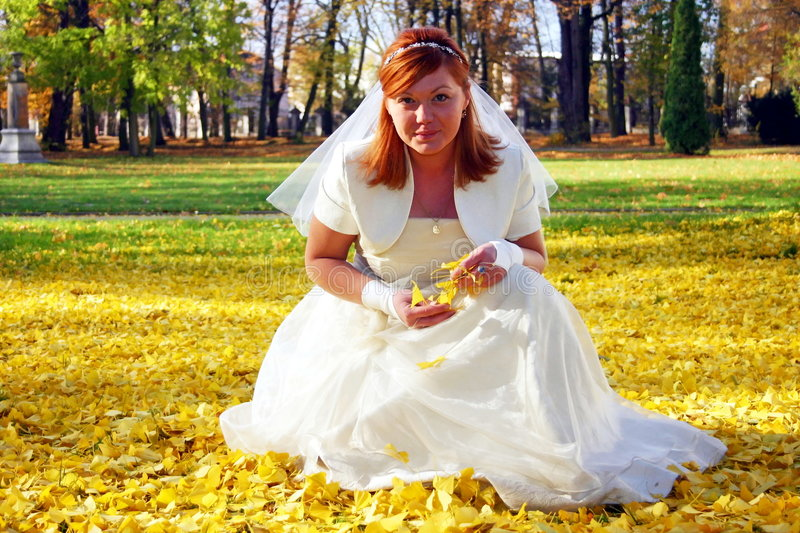 Bride in autumn park. Close up of attractive bride in traditional white dress crouched on golden Autumn leaves in park stock photography