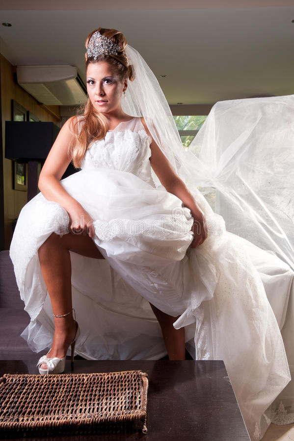 Download Bride With Big Veil Royalty Free Stock Image - Image: 23666716