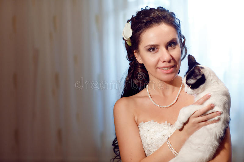 Download Bride with a cat stock photo. Image of makeup, dress - 18001120