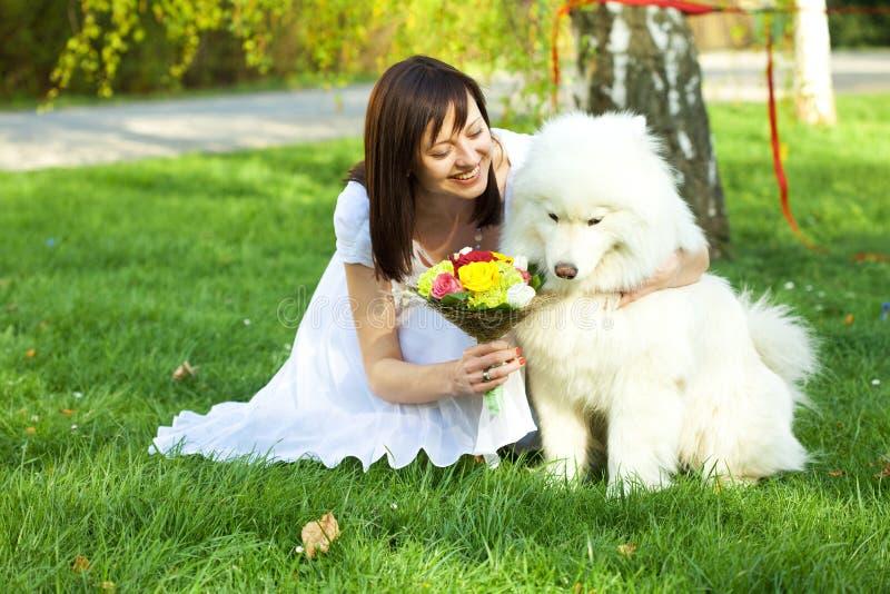 Bride with dog Samoyed royalty free stock image