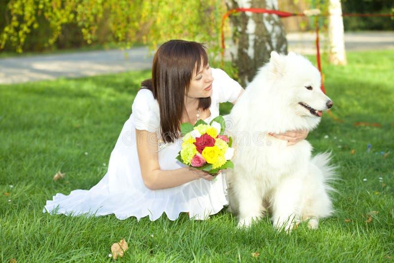 Bride With Dog Samoyed Royalty Free Stock Photography