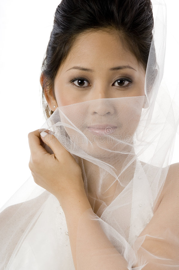 Download Bride In Dress With Veil stock image. Image of white, adult - 2302247