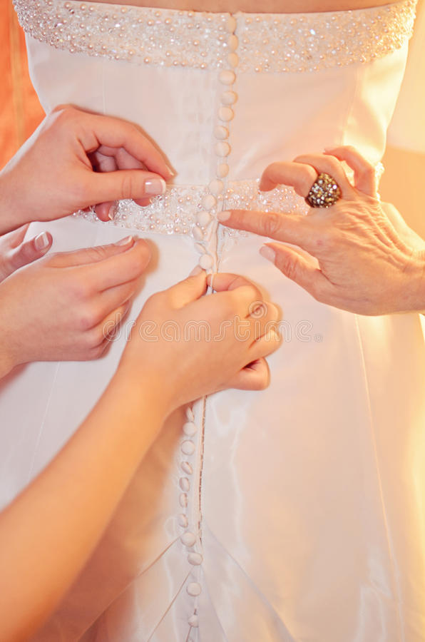 Download Bride dressing stock illustration. Illustration of celebrate - 28411490