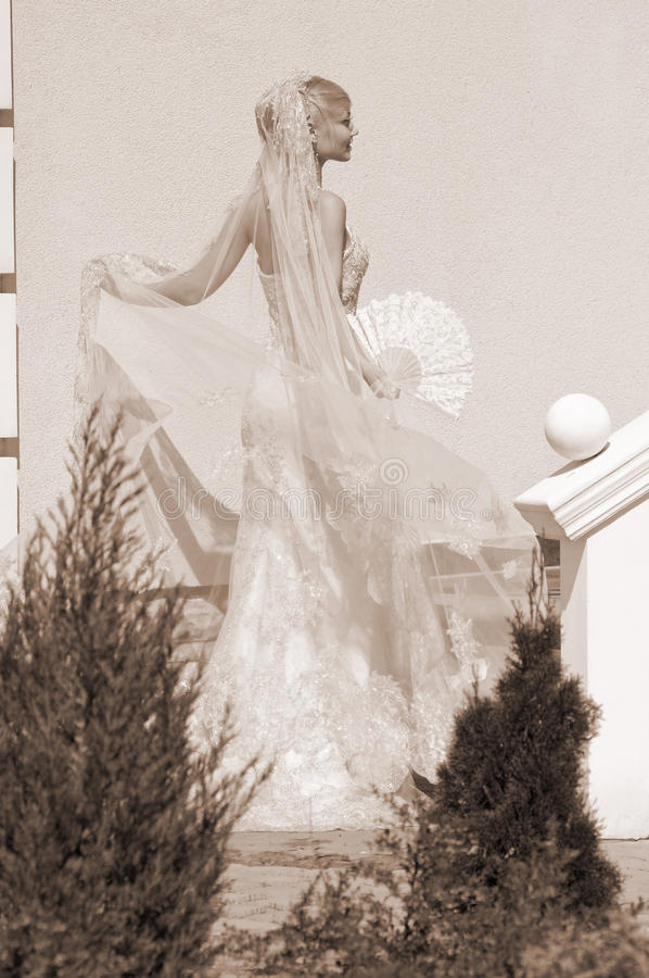 Bride with fan stock image