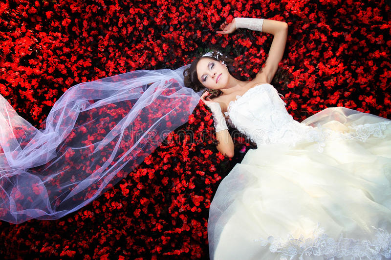 Download Bride in the flowers stock image. Image of cheerful, dreams - 17188409