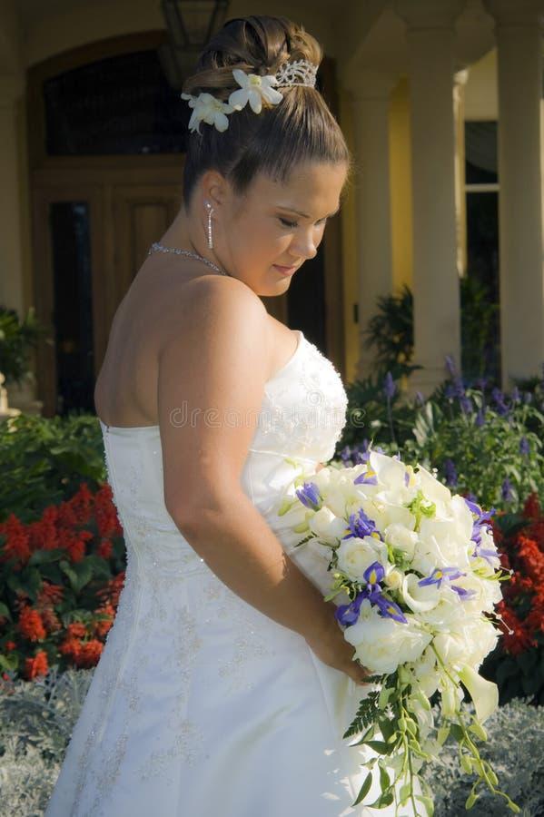 Bride In Garden Stock Images