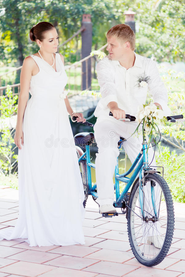 Download Bride and groom stock image. Image of event, concept - 19303513