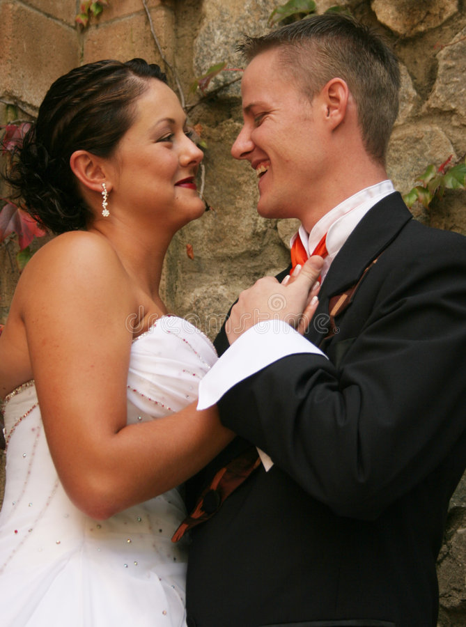 Download Bride And Groom Royalty Free Stock Images - Image: 199339