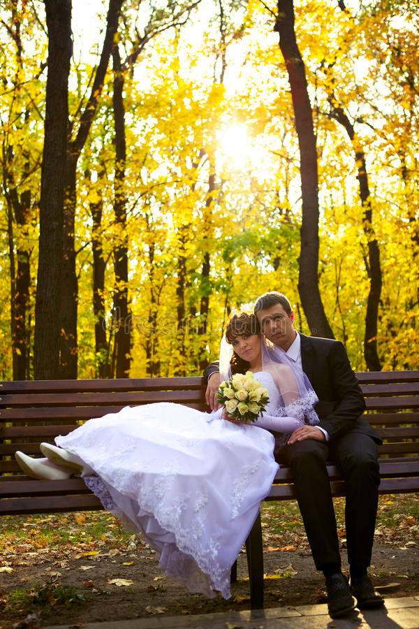 Download Bride and Groom stock image. Image of newlywed, charming - 21903245