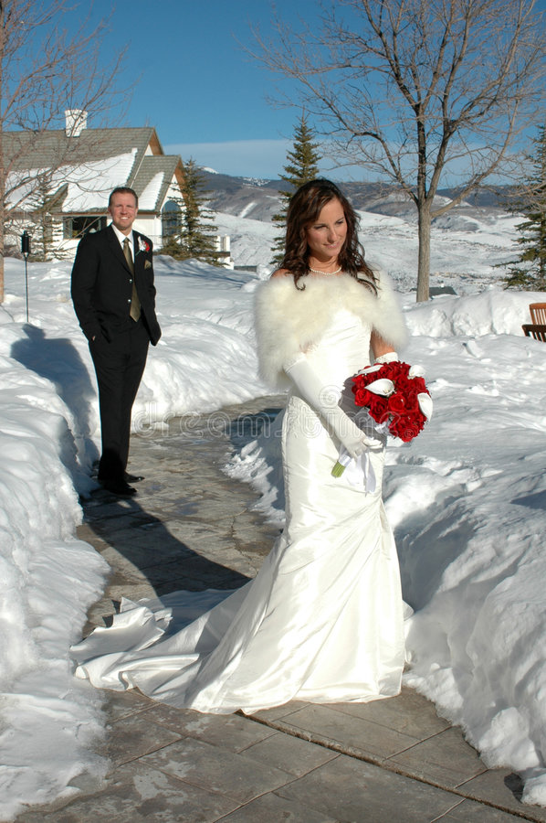 Download Bride and Groom stock photo. Image of groom, together - 5477638