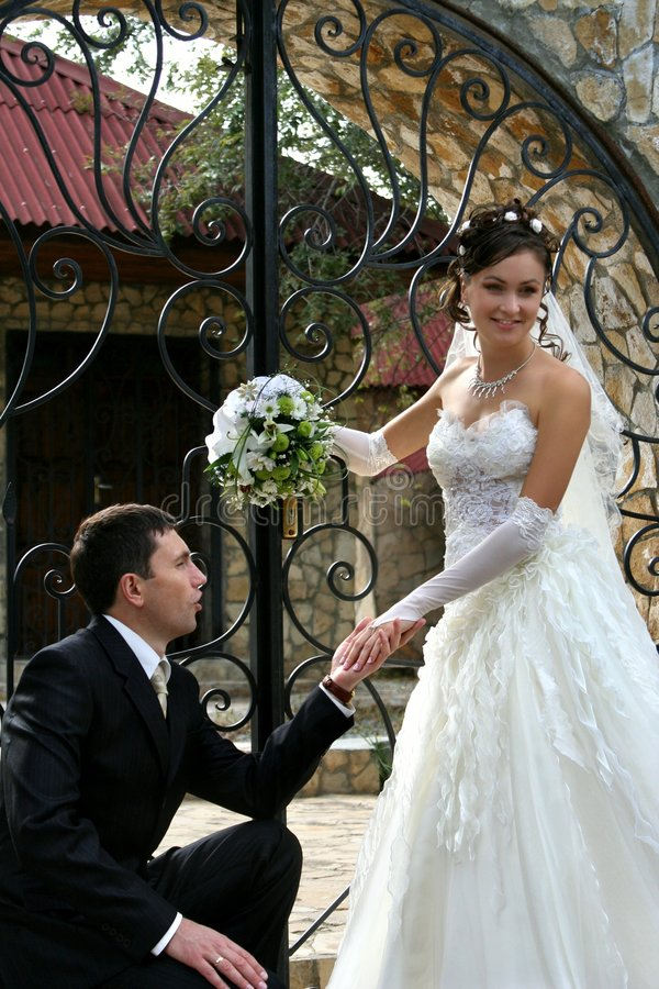 Download Bride and groom stock photo. Image of girl, elegant, couple - 8353286