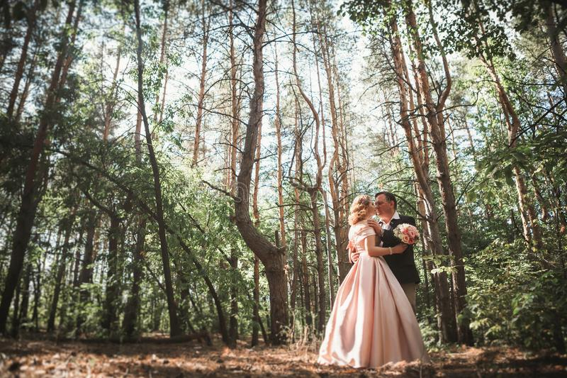 Bride and groom on the background of trees and woods in full growth stock photography