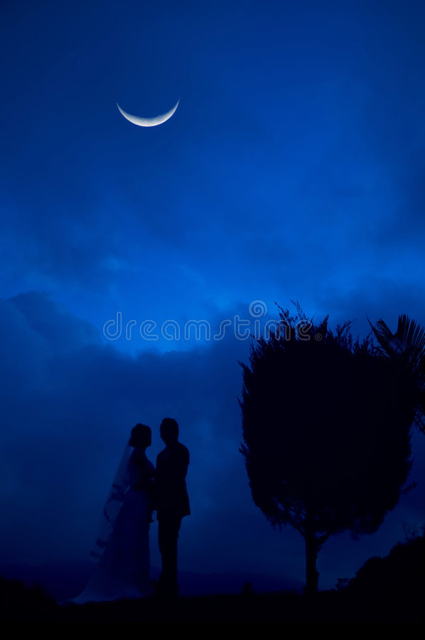 Bride and Groom in blue night royalty free stock photo